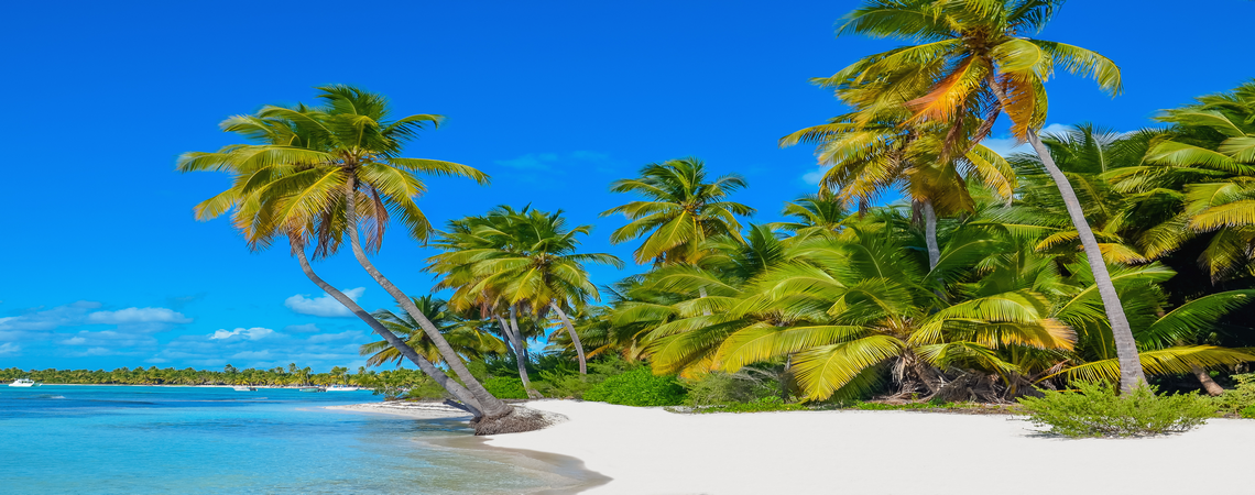 bigstock-Caribbean-beach-with-white-san-450x1140-slide3
